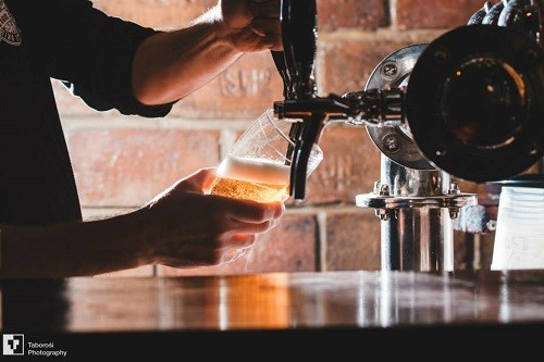 lion-pub-zrenjanin-pivo