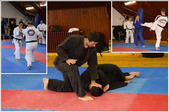 Tekvondo, karate i ninjutsu