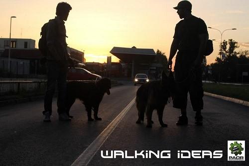 walking-ideas