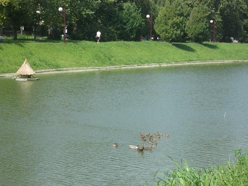 patke-jezero-2