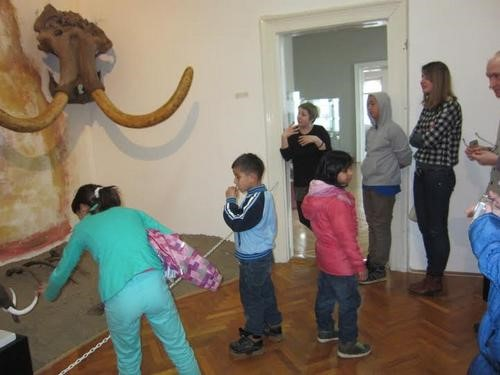 hor-bg-u-muzeju
