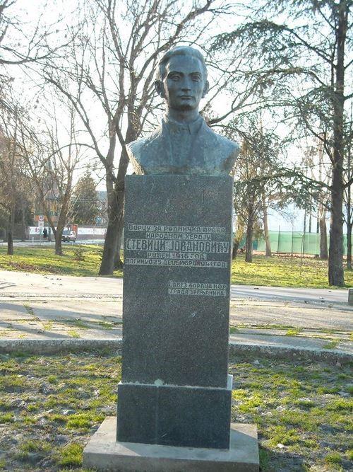 stevica-jovanovic