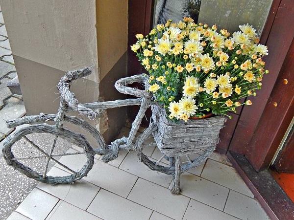 darusi-cvetni-aranzmani-dvoriste