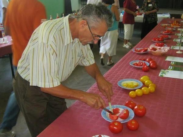 dani-paradajza