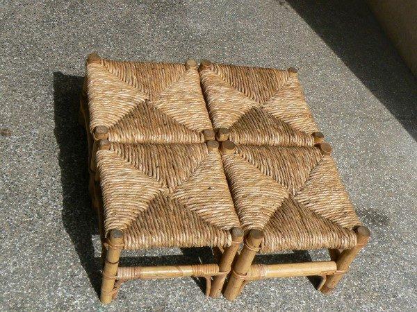 rogoz-stolice-male