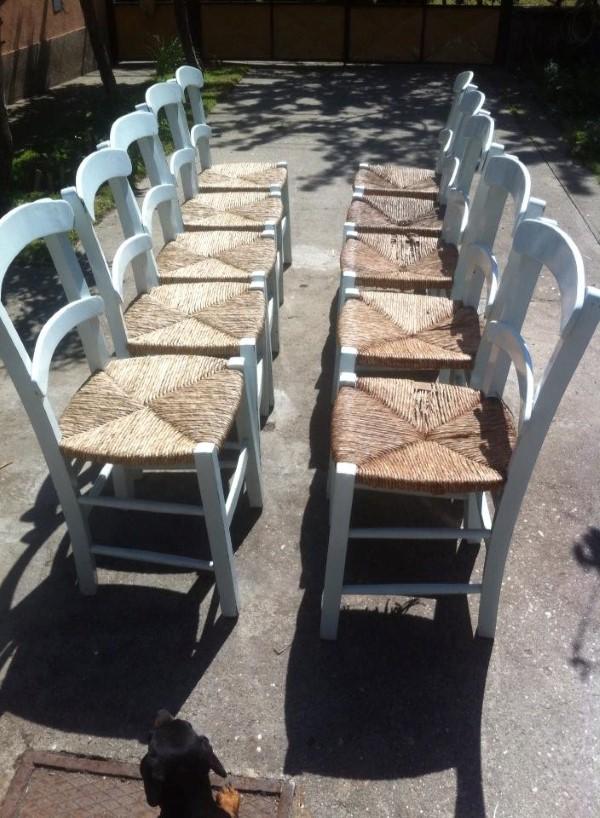 rogoz-stolice-puno