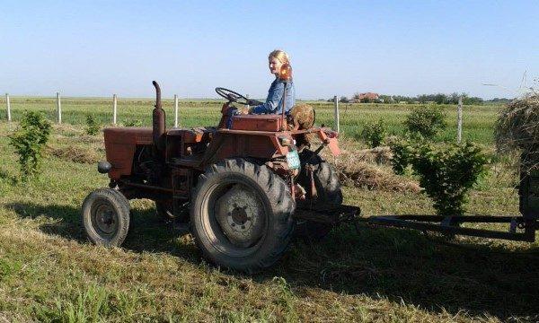 organska-gason-traktor-custom