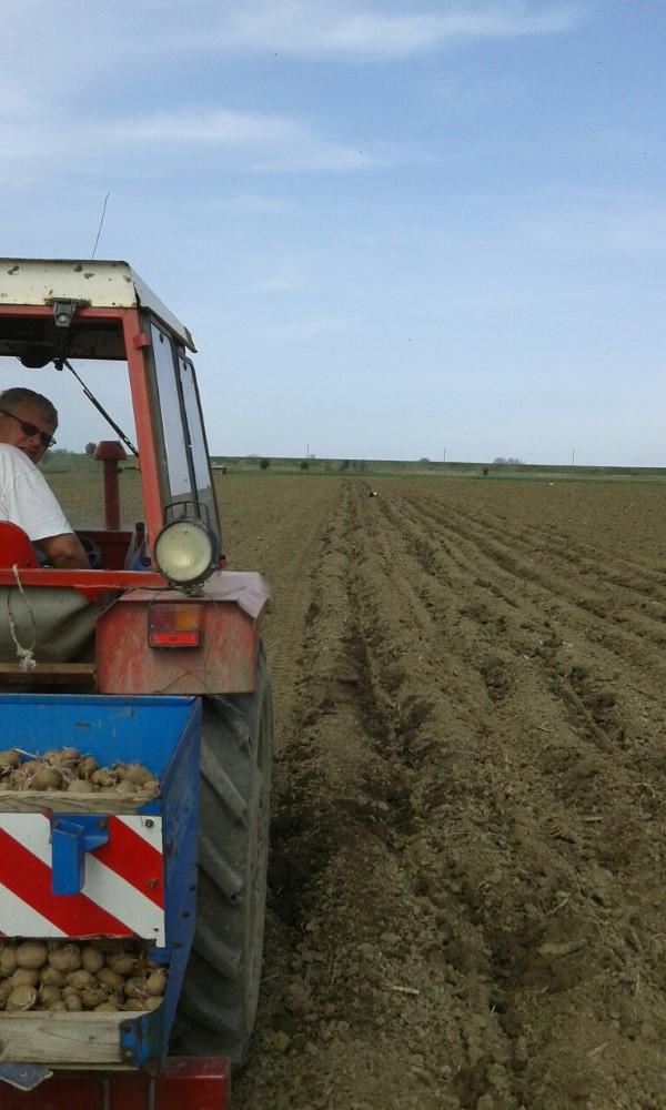 soksic-traktor-custom