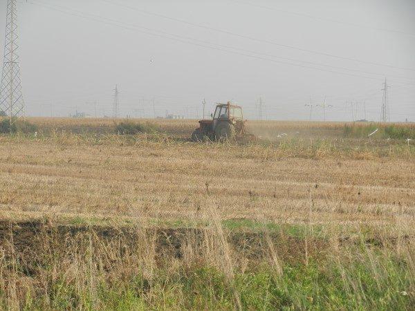 oranje-traktor-dalje