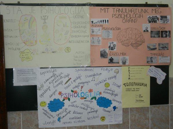 Zrenjaninska-gimnazija-dvojezicni-pano