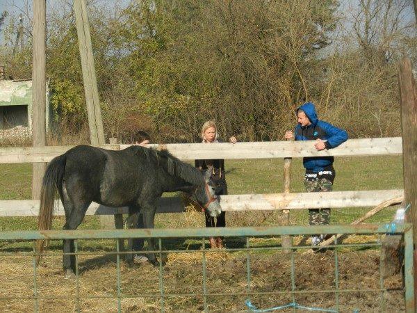 Poljoprivredna-skola-kod-konja
