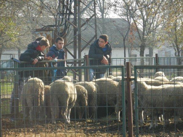 Poljoprivredna-skola-djaci