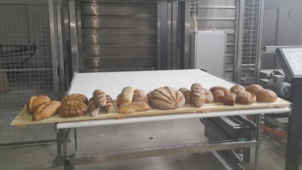 poslovanje-hlebovi