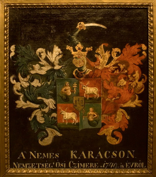 Plemićki grb Karačonjijevih